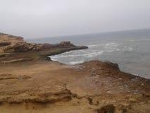 L'eau de roche de poissons de plage de nature Image stock