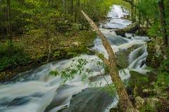 L'eau de taille à hurler la cascade courue image libre de droits