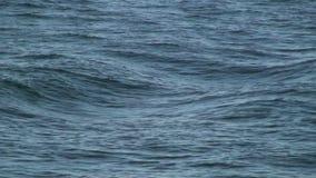 L'eau de vert de mer banque de vidéos