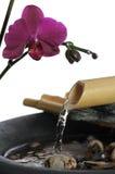 L'eau de zen Image libre de droits