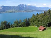 L'eau de zone de lac Thun photographie stock libre de droits