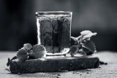 L'eau des feuilles d'ajwain et des graines, ammi de Trachyspermum dans un verre salutaire pour la perte de poids Images stock