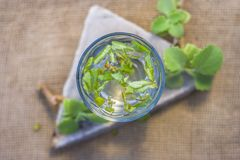 L'eau des feuilles d'ajwain et des graines, ammi de Trachyspermum dans un verre salutaire pour la perte de poids Photo libre de droits