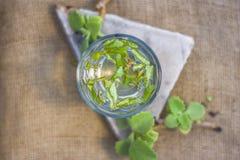 L'eau des feuilles d'ajwain et des graines, ammi de Trachyspermum dans un verre salutaire pour la perte de poids Image libre de droits