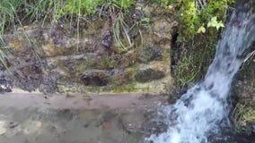 L'eau du ` s de ruisseau de courant banque de vidéos