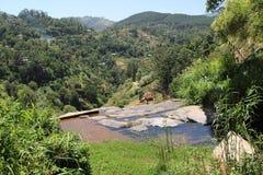L'eau pour le village Photographie stock libre de droits