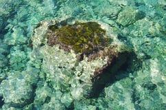 Fond clair de l'eau Image stock