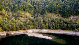 L'eau entourée par des arbres Image libre de droits