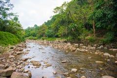 L'eau entrant dans la rivière images libres de droits