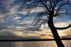 L'eau et arbre de coucher du soleil Image libre de droits