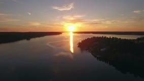 L'eau et forêt calmes dans le coucher du soleil banque de vidéos