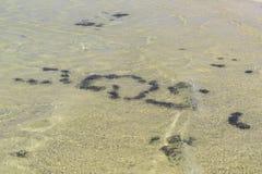 L'eau et pierres de whith de fond Images libres de droits