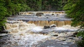 L'eau faisante rage au-dessus de la série de petites cascades - longue exposition photos libres de droits