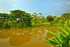 L'eau immobile du lac Photographie stock libre de droits