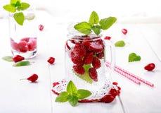L'eau infusée par fruit L'eau de Detox avec le cornouiller et la menthe photo libre de droits