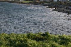 L'eau irlandaise Photo libre de droits