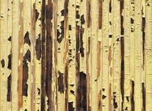L'eau jaune de peinture endommagée et écaillement Photos libres de droits