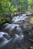 L'eau lente Photographie stock