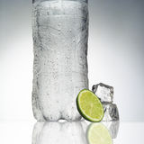 L'eau minérale de bouteille Photo libre de droits