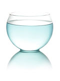L'eau modifiée la tonalité bleue dans le fishbowl photos libres de droits