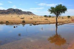 L'eau namibienne d'horizontal Images stock