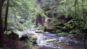 L'eau, nature Photographie stock
