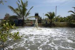L'eau puissante découlant d'un grand tuyau utilisant une pompe à eau suppl. image stock