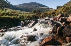 L'eau rapide Photo libre de droits