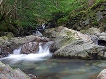 l'eau rapide sauvage Images stock