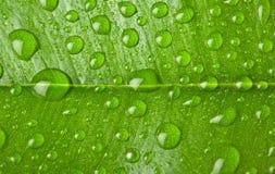 L'eau relâche la texture de fond. image stock