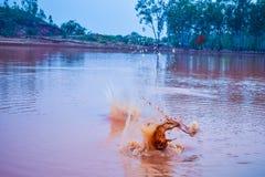 L'eau rouge de lac Photographie stock libre de droits