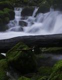 L'eau sauvage Image libre de droits