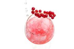 L'eau scintillante étant versée dans la boisson alcoolisée dure de genièvre Image libre de droits