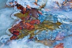L'eau se précipitant dans une glace Images libres de droits
