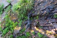 L'eau sortant de la roche, Thaïlande Photographie stock libre de droits