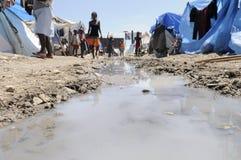 L'eau stagnante. Photographie stock libre de droits