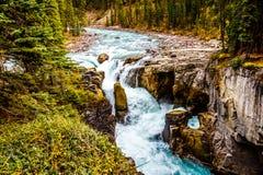 L'eau turbulente de la rivière de Sunwapta comme elle dégringole en bas de Sunwapta Falls Image libre de droits