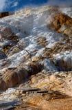 L'eau venant hors fonction terrasses de Mammoth Hot Springs Photographie stock libre de droits