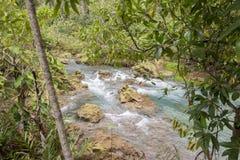 L'eau vert d'émeraude chez Tha Pom Khlong Song Nam Photos libres de droits