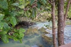L'eau vert d'émeraude chez Tha Pom Khlong Song Nam Image libre de droits