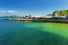 L'eau vert d'émeraude vive au port de Ballintoy le long de la côte de chaussée dans le comté Antrim, Irlande du Nord Photos stock