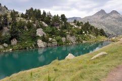 L'eau verte Photographie stock