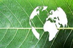 L'ecologia e pensa il concetto verde alla mappa di mondo sulla foglia verde fresca fotografia stock