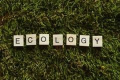 L'ecologia scritta con le lettere di legno ha cubato la forma sull'erba verde immagini stock libere da diritti
