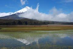L'Ecuador 2008 - Cotopaxi-specchio 2 Fotografie Stock Libere da Diritti