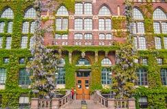 L'edera ha coperto la biblioteca universitaria di Lund, Svezia Immagini Stock
