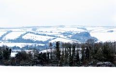 L'effet de la bête de la tempête est de neige d'hiver dans Drews photo stock