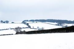 L'effet de la bête de la tempête est de neige d'hiver dans Drews images stock