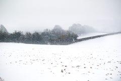L'effet de la bête de la tempête est de neige d'hiver dans Drews photo libre de droits