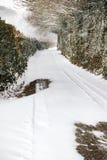 L'effet de la bête de la tempête est de neige d'hiver dans Drews image libre de droits